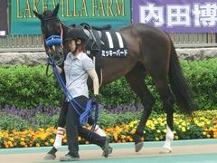 20190608 東京9R 八丈島特別 1勝 ミッキーバード 02