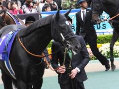 20161030 東京11R 天皇賞・秋(G1) サトノノブレス 05