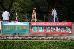 20191020 東京8R 3歳上1勝クラス ピンシェル 01