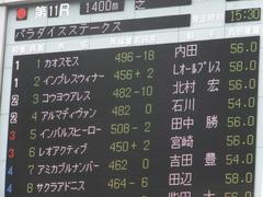 20150628 東京11R パラダイスS アルマディヴァン 02