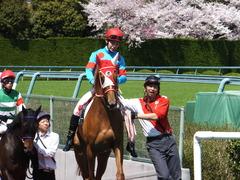 20150404 阪神4R 3歳未勝利 レーヌドブリエ 12