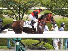 20170910 阪神3R 3歳未勝利 フェアチャイルド 28