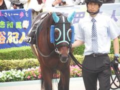 20181008 東京10R 六社S(1600) トレジャーマップ 04
