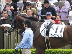 20160423 東京5R 3歳未勝利 アークアーセナル 10