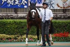 20191103 東京9R 3歳上2勝クラス ロジスカーレット 10