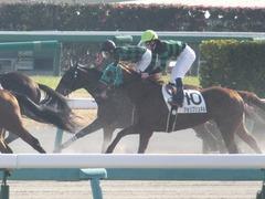 20171216 中山2R 2歳牝馬未勝利 ルフィーナ 12