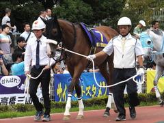 20140915 大井11R 東京記念 ユーロビート 04