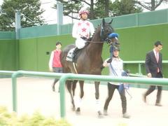 20190928 中山10R 茨城新聞杯(2勝) ミッキーバード 11