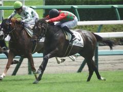 20190916 中山5R 2歳牝馬メイクデビュー バイカル 16