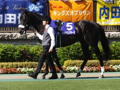 20140511 東京11R NHKマイルカップ(G1)ショウナンアチーヴ03