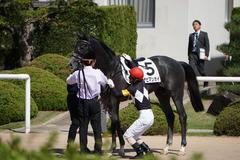 20191006 京都5R 2歳メイクデビュー ハナビマンカイ 18