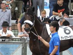 20160918 中山12R (500) アークアーセナル 09