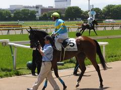 20170506 東京5R 3歳牝馬500万下 ビルズトレジャー 18