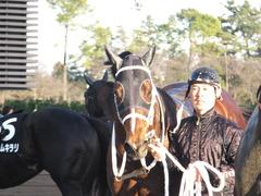 20161224 中山11R 師走S(OP) ショウナンアポロン 20