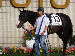 20151121 京都1R 2歳未勝利 アドマイヤムテキ 02