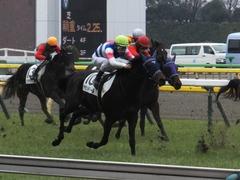 20160130 東京4R 3歳未勝利 アタンドリール 14
