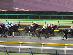 20140629 東京10R ゴールウェイ 11