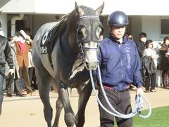 20190113 中山9R 黒竹賞(500) ロークアルルージュ 09