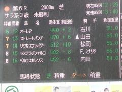 20190303 中山6R 3歳未勝利 ストレートパンチ 01