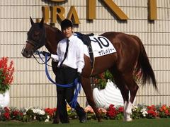 20151024 京都1R 2歳未勝利 サクレメジャー 07