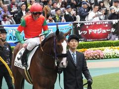 20161030 東京1R 2歳未勝利 プンメリン 17