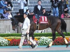 20161105 東京11R 京王杯2歳S(G2) コウソクストレート 02