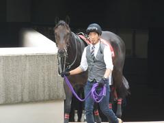 20141012 東京8R 東京HJ メジロサンノウ 02