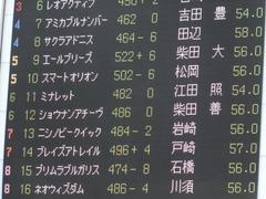 20150628 東京11R パラダイスS ショウナンアチーヴ 02