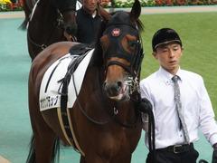 20141026 東京8R オウケンブラック 06