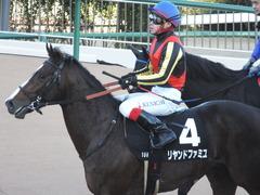 20141227 中山10R リヤンドファミユ 14