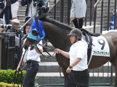 20170507 東京6R 3歳(500) アドマイヤシナイ 02