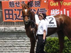 20160604 東京3R 3歳未勝利 オートシャンティ 07