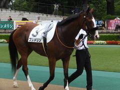 20170625 東京1R 3歳牝馬未勝利 プンメリン 10