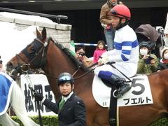 20180128 東京6R (500) プエルト 08