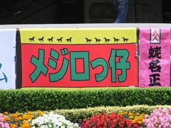 20161030 東京11R 天皇賞・秋(G1) モーリス 01