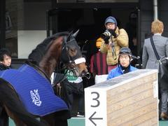 20151227 中山4R 2歳メイクデビュー アークアーセナル 18