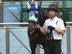 20170916 中山9R 古作特別 (500) アドマイヤシナイ 06