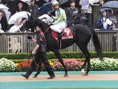 20151108 東京11R AR共和国杯 サトノノブレス 10