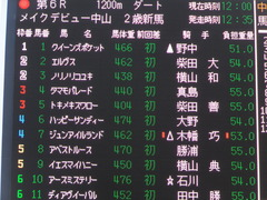20161211 中山6R 2歳メイクデビュー ハッピーサンディー 01