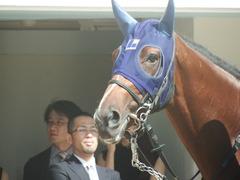 20190928 中山5R 2歳牝馬メイクデビュー アルソリート 04