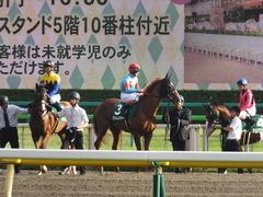 20161008 東京11R サウジアラビアRC(G3) クライムメジャー 17