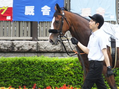 20170625 東京1R 3歳牝馬未勝利 プンメリン 08