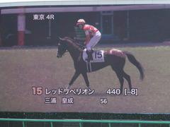 20140517 東京4R レッドリベリオン 12