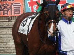 20181124 東京3R 2歳未勝利 ストレートパンチ 09