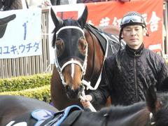 20150222 東京11R 金蹄S ショウナンアポロン 04