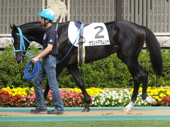 20141026 東京4R サウンドアラムシャ 05