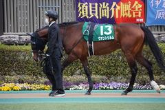 20200222 東京11R ダイヤモンドS(G3) ヴァントシルム 06