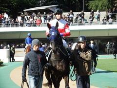 20180218 東京2R 3歳未勝利 ダノンシャレード 14