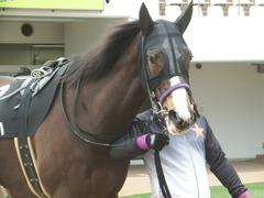 20190323 中山9R ミモザ賞 3歳牝馬(500) トロハ 04
