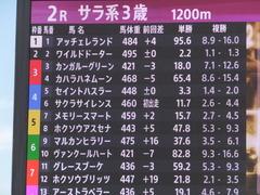 20161012 大井2R 3歳95万下 マルカンヒラリー 00